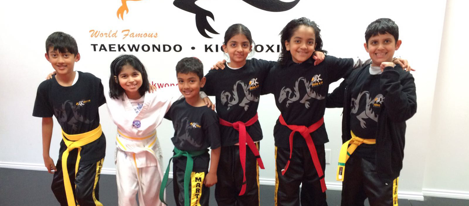 best taekwondo training surrey